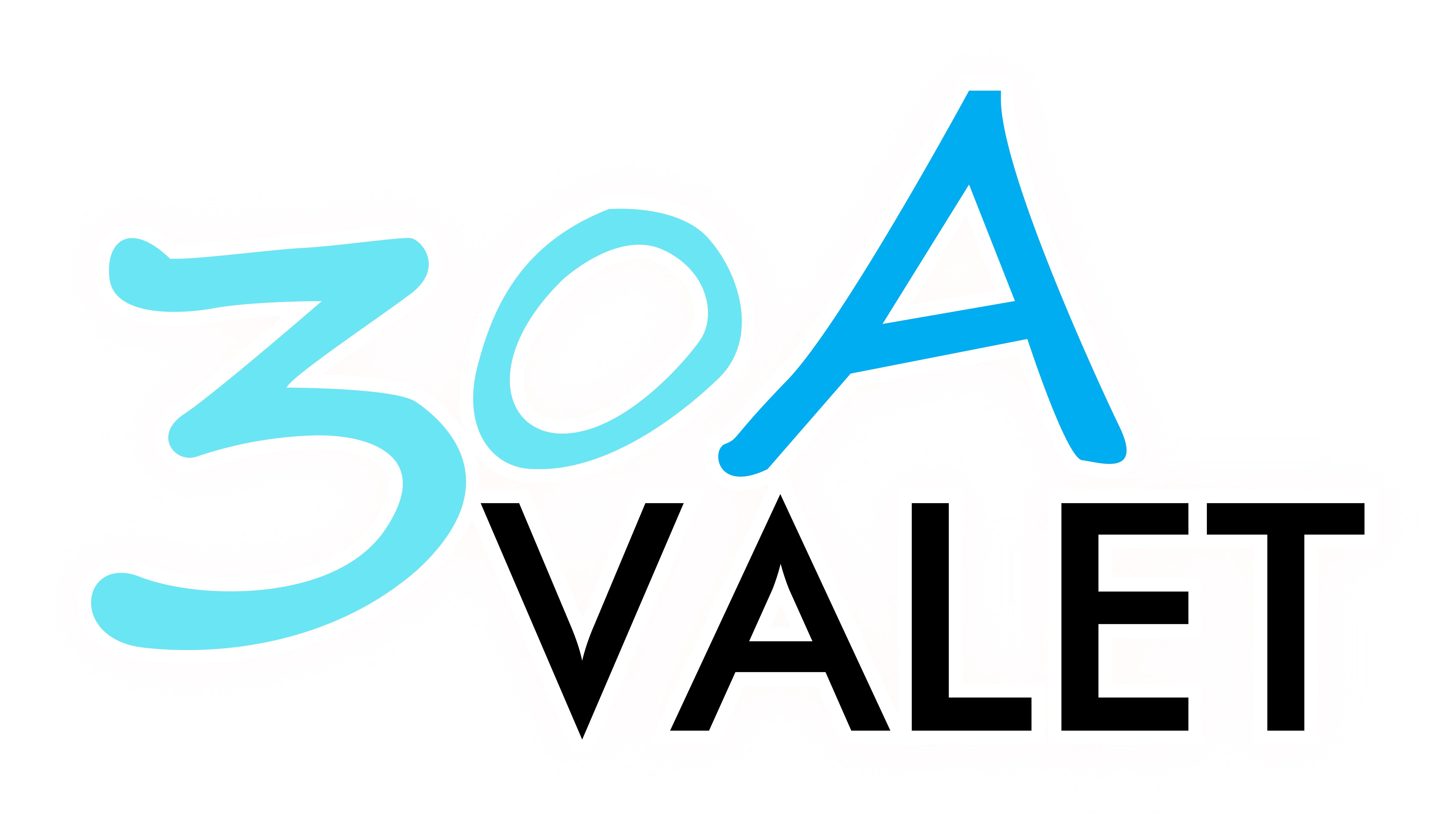 30A Valet | Valet Prarking Services